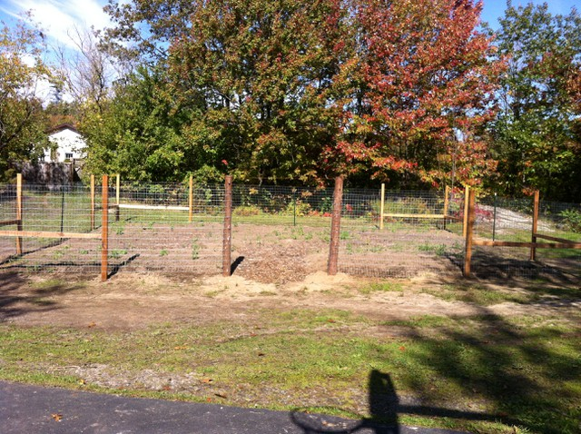 Image for We just finished a record breaking fencing Work Bee at Mission Park Community Garden